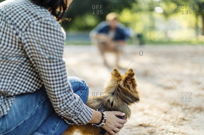 Young woman with dog in a park opposite to a man