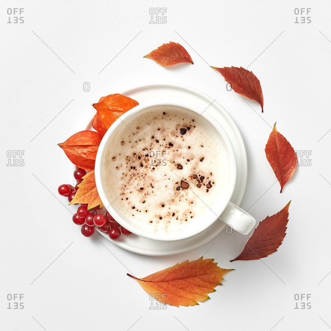 A cup of cappuccino sprinkled with chocolate surrounded with red autumn leaves