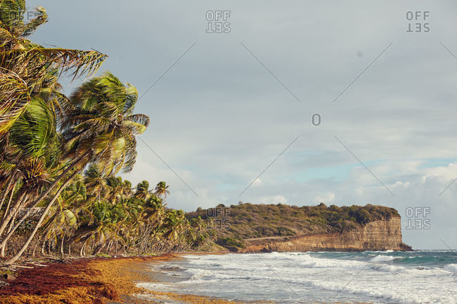 Tropical coastline of Grenada Island in the Caribbean