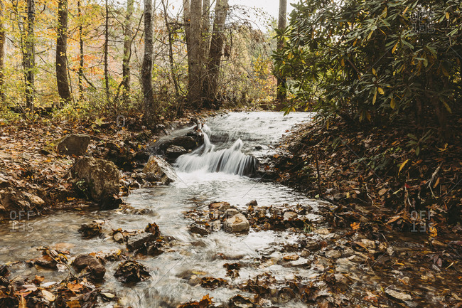 Scenic view of creek with small waterfalls in autumn