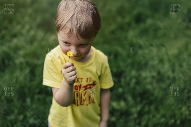 Little boy holding a little yellow flower outdoors