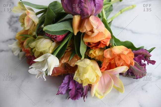 Bouquet of colorful flowers on white marble surface