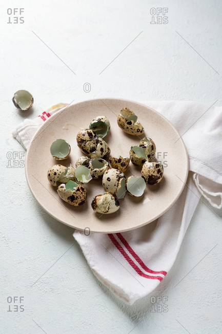 Close up of eggs shells on plate on white surface