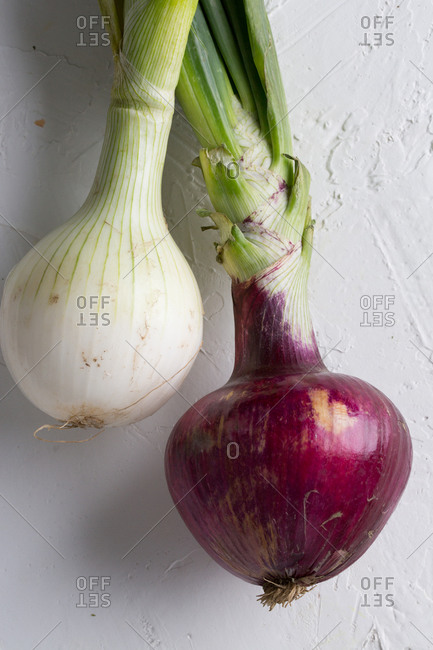 Close-up of two onions on a white countertop