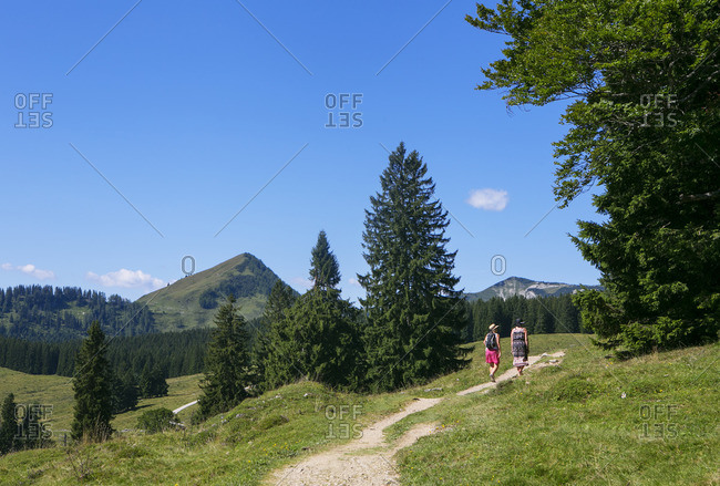 Austria, Salzburg State, Salzkammergut, Postalm, hiker