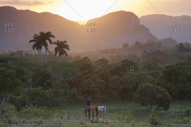Caribbean, Cuba, Vinals, horseback ride at evening light in the Valle de Vinals