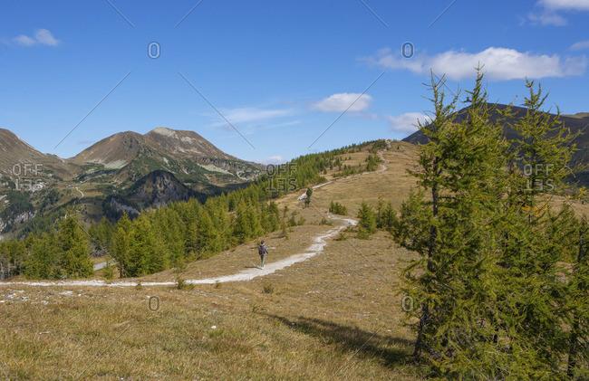 Austria, Carinthia, Bad Kleinkirchheim, Saint Oswald, Brunachhohe, Nockberge National Park,