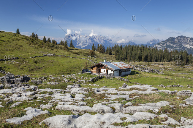 Eggenalm in the Chiemgau Alps below the Fellhorn behind Wilder Kaiser, Reit im Winkl, Chiemgau Alps, Chiemgau, Upper Bavaria, Bavaria, southern Germany, Germany, Europe