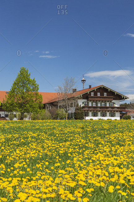 Bergerhof in Marwang near Grabenstadt, Chiemgau, Upper Bavaria, Bavaria, Southern Germany, Germany, Europe