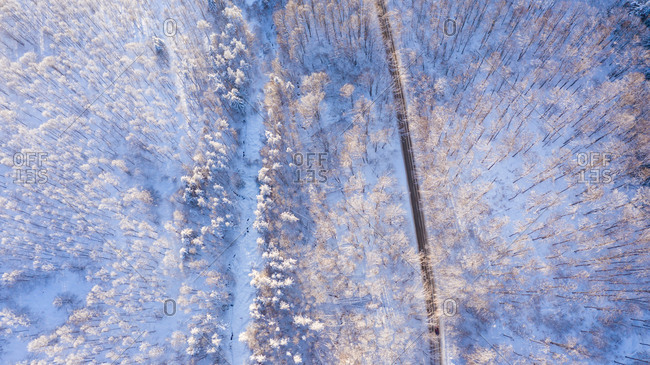 Aerial view of a road in winter.