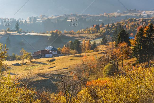 Autumn landscape. Misty sunrise in Rodopi, Bulgaria.