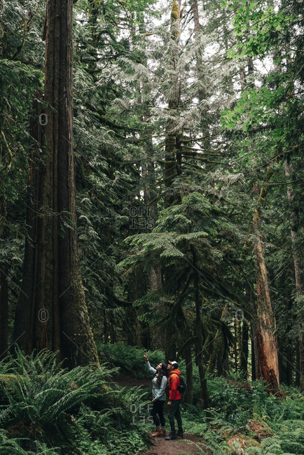 A young couple enjoys a hike on a trail in the Pacific Northwest.