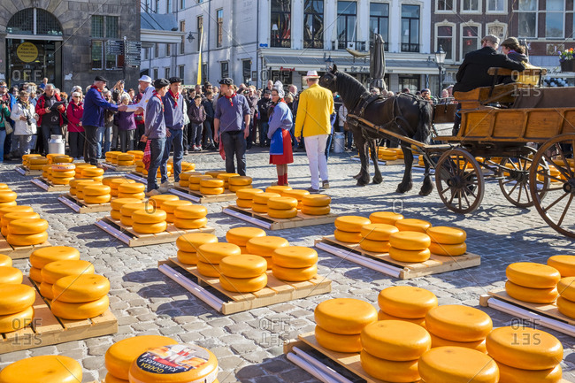 Gouda, South Holland, Netherlands - April 21, 2016: Cheese market on Markt square, Goude, South Holland, Netherlands