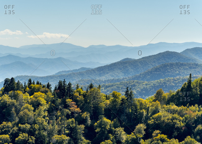 Smoky Mountains National Park, Newfound Gap, border of North Carolina and Tennessee, United States