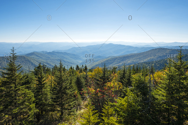 Smoky Mountains National Park, Clingmans Dome, border of North Carolina and Tennessee, United States