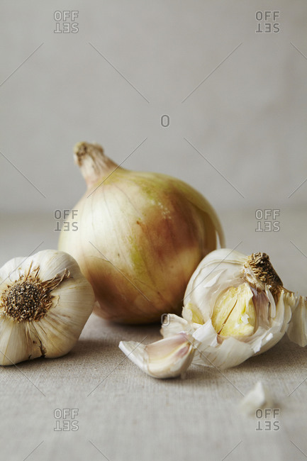 Still Life of Garlic and Onions Close Up