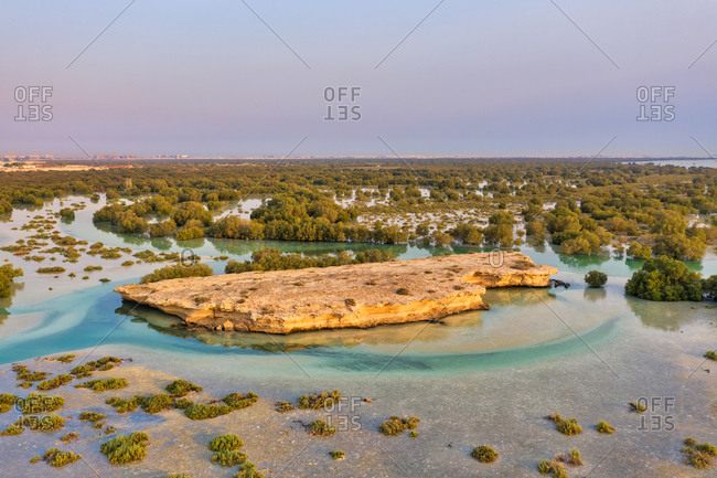 Aerial view of flooded vegetation at Abu Al Sayayif natural reserve, Abu Dhabi, United Arab Emirates