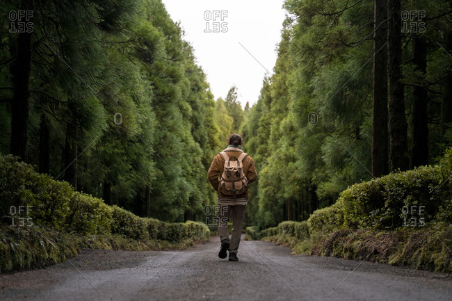 Rear view of man walking on forest road- Sao Miguel Island- Azores- Portugal