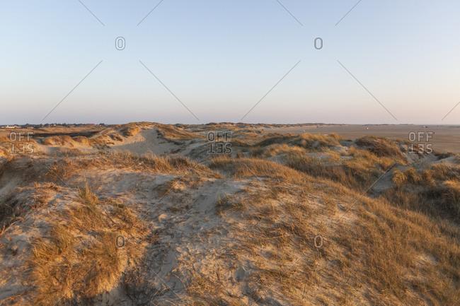Denmark- Romo- Clear sky over beach dunes