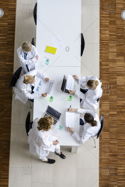 Female doctors reading papers in a meeting in conference room