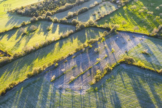 Spain- Balearic Islands- Mallorca- Montuiri- Aerial view of green countryside meadows at dawn