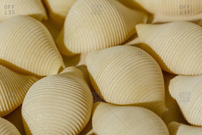 Detail of handmade Conchiglie pasta