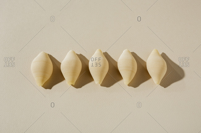 Row of five Conchiglie pasta shells on a neutral background