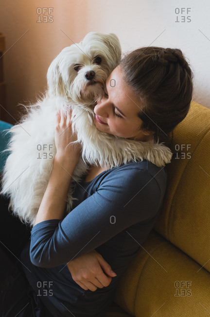 Maltese dog owner sitting on yellow sofa and holding dog