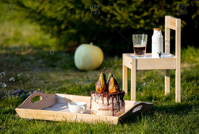 Pear cake and cup of coffee with pumpkin on background on green lawn at countryside
