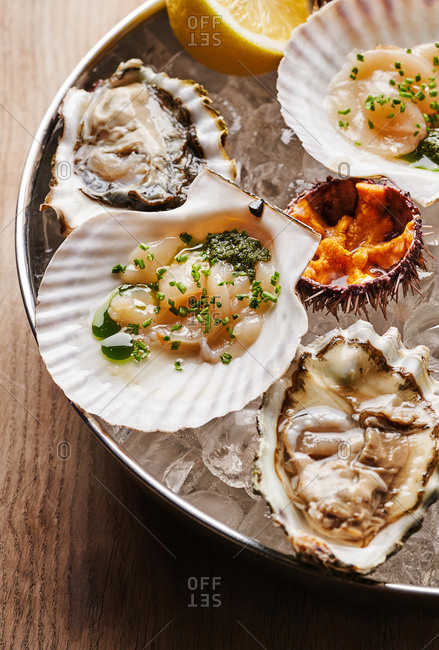 Overhead view of scallops, oysters and sea urchins on ice