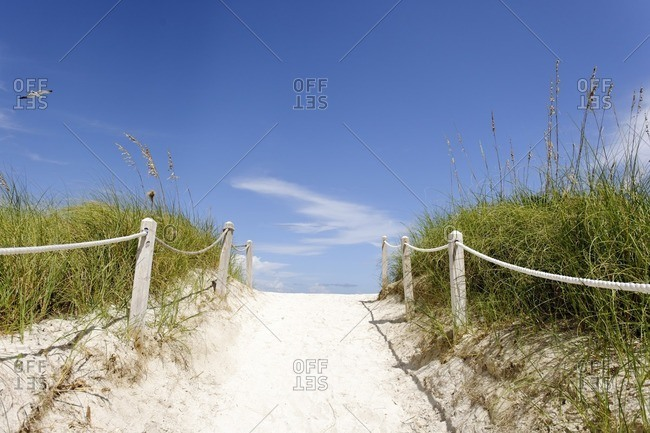 Beach path, transition, dune vegetation on South Pointe Park, Miami South Beach, Florida, USA