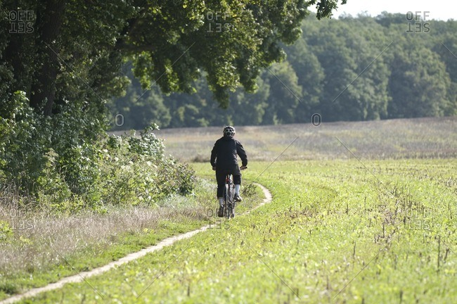 Cyclists at the edge of the forest