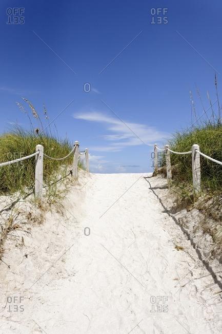 Beach path, transition, dune vegetation on South Pointe Park, Miami South Beach, Florida, USA