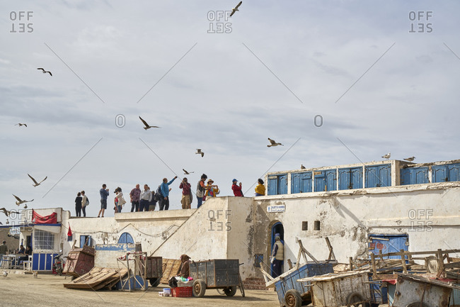 November 8, 2017: The Port of Essaouira, Essaouira, Morocco; November 8 2017; The fish market with plenty of seagulls at Essaouira Port, formerly Mogador, Morocco, North Africa, Africa. The Port of Essaouira is not only home to many fishing boats and vessels, it is a popular tourist attraction and has a significant and interesting history attached to it. Fishing is done for local distribution and plays a significant role in the atmosphere and lure to the port.