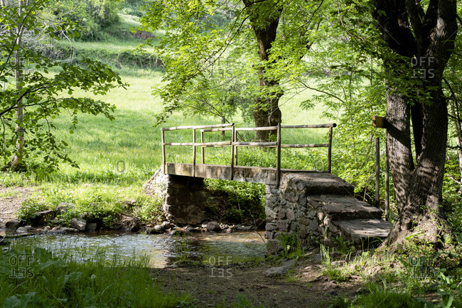 Wooden bridge over a river in the middle of a forest.