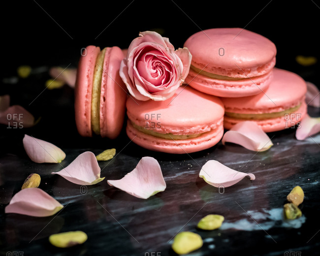 Pink Pistachio Rose Macarons Against a Black Background