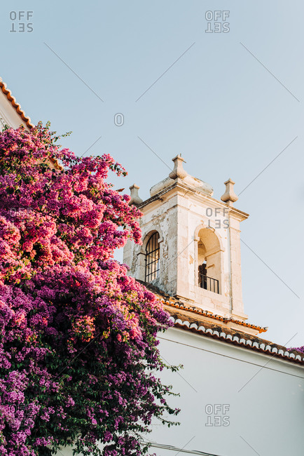 Bougainvillea in full blossom near an old church,
