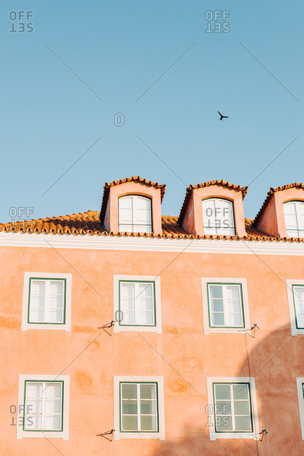 Pink building in Lisbon and a swallow in the sky