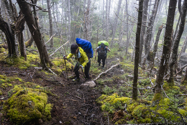 Two Middle Aged Female Hikers On East Coast Trail
