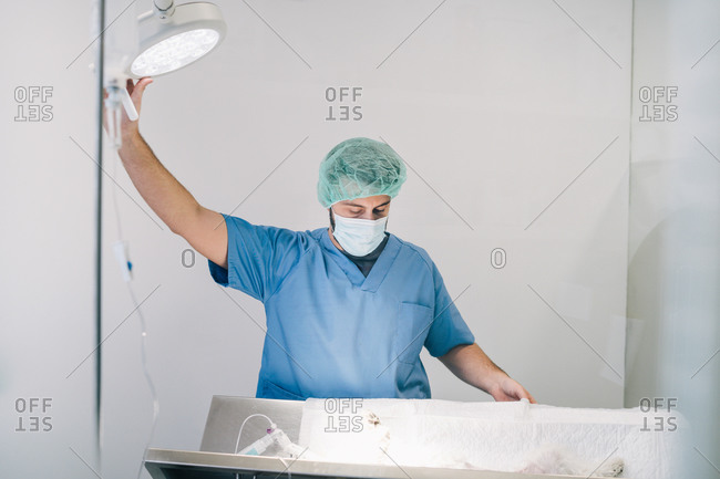 Veterinary with blue gown placing the lamp for the surgery