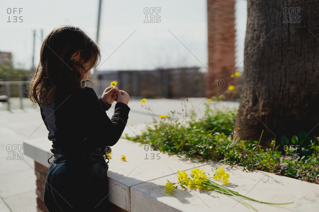 Adorable four-year-old girl looking at the yellow flowers in her hand