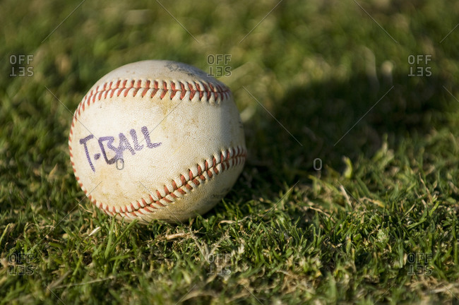 Close-up of TBall baseball sitting in a field of grass