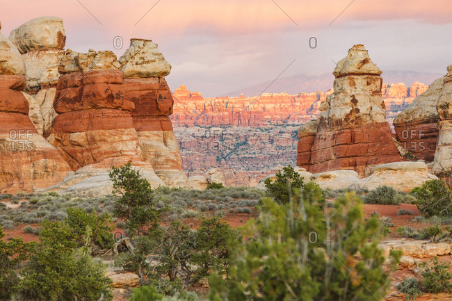 Sunset looking from the Doll House to The Needles in Canyonlands Utah