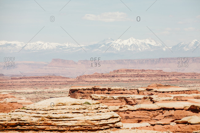 Muted red tones on a sunny day overlooking the maze canyonlands Utah