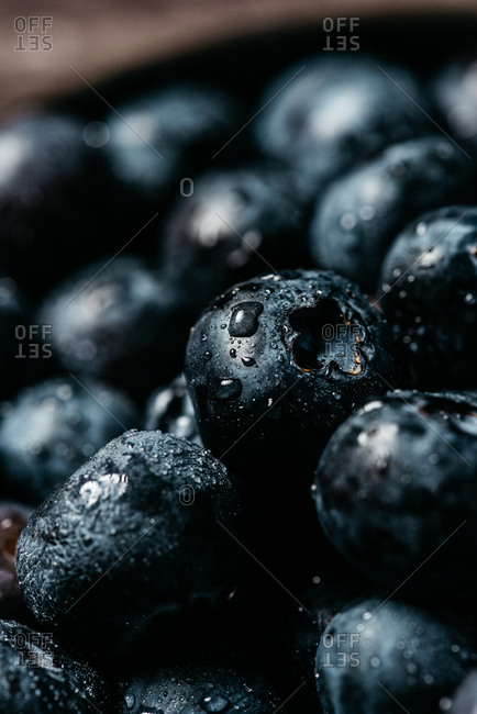 Fresh blueberry with drops of water