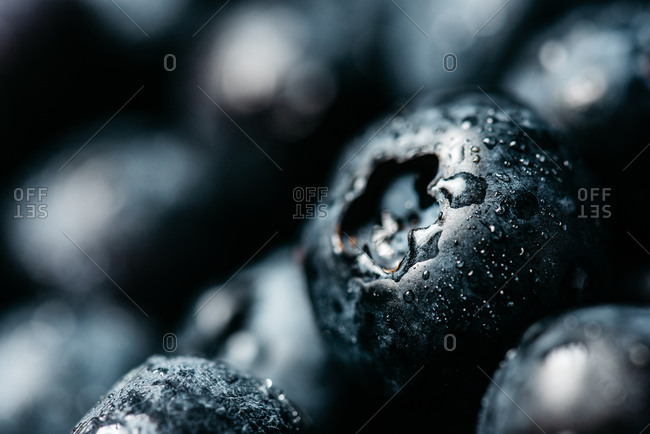 Closeup natural background with appetizing fresh ripe and juicy blueberries with water drops