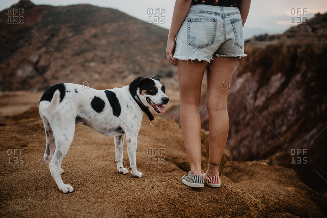 Cropped unrecognizable woman in casual clothes walking along rocky mountain with obedient dappled dog