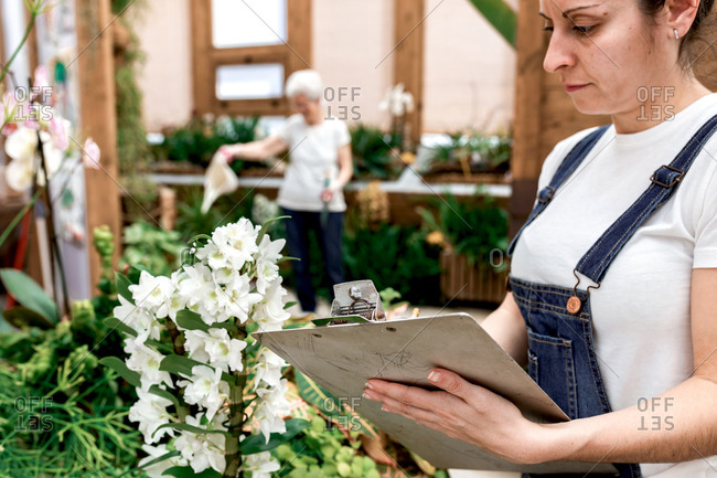 Crop adult woman writing on clipboard while standing near plant with white flowers during work in hothouse