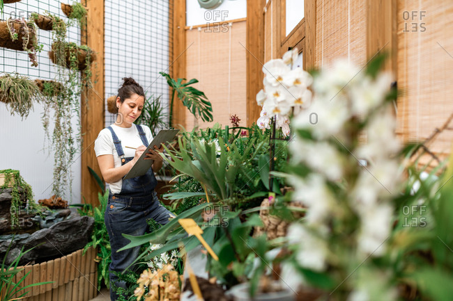 Side view of adult woman writing on clipboard while standing near plant with white flowers during work in hothouse