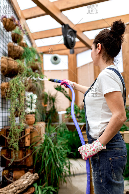 Side view of adult female in gloves using hose to water plants hanging on wall during work in indoor garden